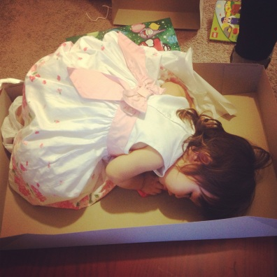 Little Miss so tired she tried to sleep inside a present.